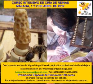 cartel-curso-crc3ada-de-reinas-bee-garden