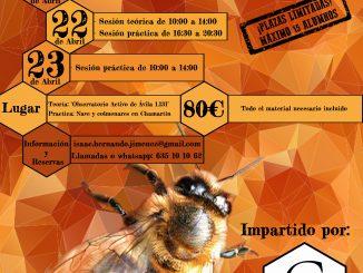curso-apicultura